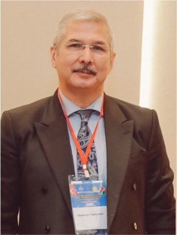 T.E.D. Professor Mehman Həmzəyev